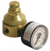WATTS 1/4 LF560G 0-125 Pressure Regulator,0.6cm ,0 to 125 psi