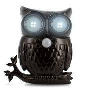 Ideaworks Led Owl Sensor Light