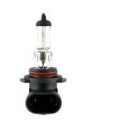 Wagner Lighting BP880 T-3 1/4 Bulb 1cm