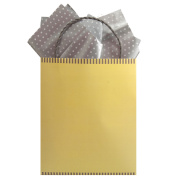 The Gift Wrap Company Two Tone Mod Mellow Kraft Tote, 1 Ct