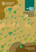 Forest for Kids