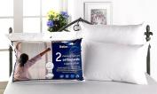 Better Dreams Memory Foam Core Pillow 2 Pack