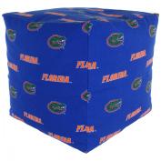 College Covers Fan Shop Florida Gators Cube Cushion - 46cm x 46cm