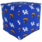 College Covers Fan Shop Kentucky Wildcats Cube Cushion - 46cm x 46cm