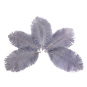 Wionya 50pcs Ostrich Feather Craft 6-8inch(15-20cm) Plume for Wedding Centrepieces Home Decoration