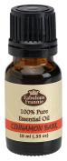 Cinnamon Bark Pure Essential Oil 10ml by Fabulous Frannie