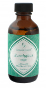 Expressive Scent Scented Home Fragrance Essential Oil, Eucalyptus 60ml