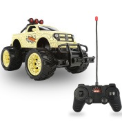QuadPro NX5 Remote Control Car, 2WD 1:20 Scale Monster Truck Rc Cars for Kids, Off Road Vehicle Toys for Boys