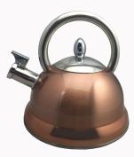Baumalu 342782 3 Litre Stainless Steel Kettle – Copper