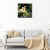 Cat & Butterfly DIY 5D Diamond Embroidery Painting Cross Stitch Home Decor Craft
