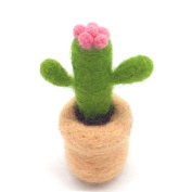 Artec360 Wool Needle Felting Kits Succulent Plants, Queensland Wool Original Pure Fluffy Soft, Within 3 Needles and Tutorial for Felt Starter
