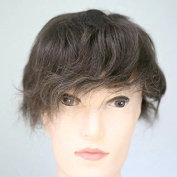 Lanting Men's Toupee Hairpiece Real Human Hair Straight Replacement 25cm x 20cm Natural Straight Toupee Wigs for Men