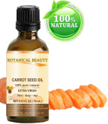 CARROT SEED OIL 100% Pure/ Natural /Extra Virgin / Unrefined / Cold Pressed/ Undiluted Carrier Oil. 0.33 Fl.oz.- 10 ml. Skin, Body and Hair Care. by Botanical Beauty