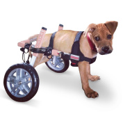 Dog Wheelchair - For Small Dogs 5-11kg - By Walkin' Wheels