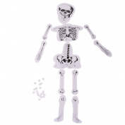 MagiDeal DIY Assembly Human Skeleton Model Bone Structure Science Experiment ACCS Kids Toy