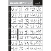 Dumbbell Workout Exercise Poster Laminated - Strength Training Chart - Build Muscle, Tone & Tighten - Home Gym Weight Lifting Routine - Body Building Guide w/ Free Weights