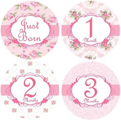 Belly Doodles 16 Monthly Baby Stickers Girl Pink Roses 10cm