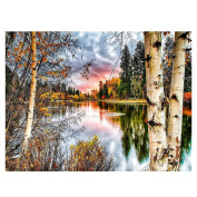 WinnerEco Forest Landscape 5D Diamond DIY Painting Kit Home Decor Craft Painting Rhinestone Pictures
