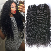 GEM Beauty Indian Curly Hair Unprocessed Indian Virgin Hair 4 Bundles Curly Weave Remy Human Hair 1b Colour