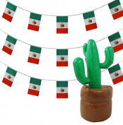 MEXICAN PARTY ACCESSORY SET 33FT BUNTING 10 metres + 100cm TALL GIANT INFLATABLE CACTUS MEXICO THEME DECORATION