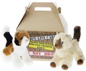 Bundle of 2 Douglas Plush 20cm Calico and Himalayan Cats Plus Carrier - Maps & Hilda