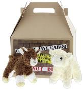 Bundle of 2 Douglas Super Soft Plush 15cm Baby Goat & Lamb with Carrier - Buffy & Little Bit