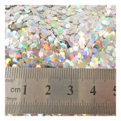 15g LARGE HOLOGRAPHIC GLITTER *4 SIZES *5 COLOURS * CRAFTS NAIL ART CARD MAKING (Silver 0.2cm
