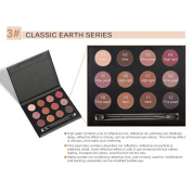 Flower Blooming Smoky 12 Colours Eye Nude Shimmer Glitter Eyeshadow palette with makeup eyeshadow brush