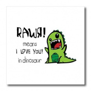 EvaDane - Funny Quotes - Rawr means I love you in dinosaur - Iron on Heat Transfers - 8x8 Iron on Heat Transfer for White Material