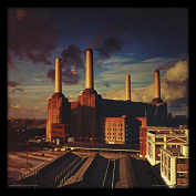 "Pink Floyd ""Animals"" Album Cover Framed Print, Multi-Colour, 30cm"