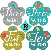 "New 2017! Stick'Nsnap(TM) 46cm Blooming Flowers"" Pastel milestones monthly growth stickers. Flower shape 11cm inch diameter. To put on bodysuit creeper bibs bottoms or ONESIE.Great Shower Gift!"