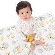 Baby Blanket for Unisex Soft Minky With Double Layer Dotted Backing, Lovely Green Owls Printed 80cm x 100cm