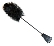 2 in 1 Exquisite Ostrich Feather Tickler and Leather with Lace Whip by BLISS BOUNDARY