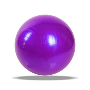 Exercise Gym Yoga Swiss Fitness Ball 75cm with Hand Pump Anti Burst for Home and Gym Improve Balance and coordination