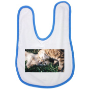 Friends, Cat And Dog, Cats And Dogs, Pet baby bib in blue