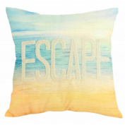 Formula Escape and Arrows Reversible Print Decorative Pillow, Blue and White
