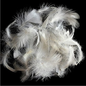 Bulk 2-4cm white goose feathers for mattress, sofa and more
