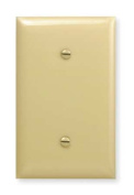 Blank Strap Mount Wall Plate, Hubbell Wiring Device-Kellems, NP14I