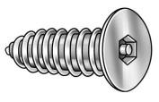TAMPER-PRUF SCREW 51350 Tamper Resist Screw, #6, 2.5cm L, PK25