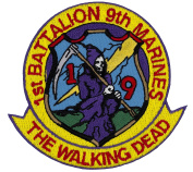 "1st Battalion 9th Marines ""The Walking Dead"" Embroidered Patch 7.6cm x 7.6cm"