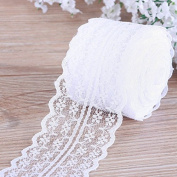 White Lace Roll ,Lace Ribbon , Vintage Style Scalloped Edge Lace Ribbon DIY for Craft Lace