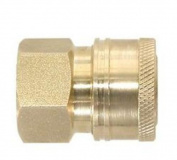 Valley PK-85300102 Quick Connect Coupler, 0.6cm QC x FNPT, Brass