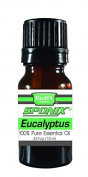 Sponix Eucalyptus Oil - High Quality Therapeutic Grade Oil - 100% Pure and Natural - 10 mL