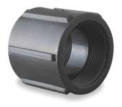 BANJO CPLG050 Pipe Coupling, 1.3cm , FPT, 150 PSI, Black
