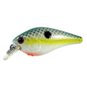 Luck E Strike LRCSBC5-04-1 Luck E Strike Rc2 Crankbait Series 1 Tasty Shad, 0. 350ml