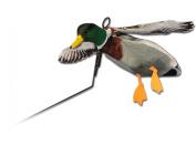 Deadly Decoys FLY-MAL-1 Drake Mallard Flyer Decoy includes 18cm Stake