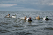 Tanglefree Diver Decoy Migration Combo Pack