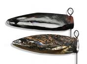 Deadly Decoys HL-MAL-1 Headless Mallard Ducks Motion Decoys - 12 Pack