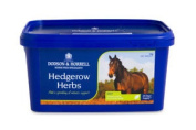 Dodson & Horrell Hedgerow Herbs 1 Kg Herbal Remedy Supplement Horse Equine