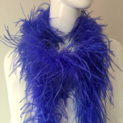 Shekyeon 2yards/lot 1.9 Metre Ostrich Feather Boa 1-Ply Costume Decoration Feather Craft